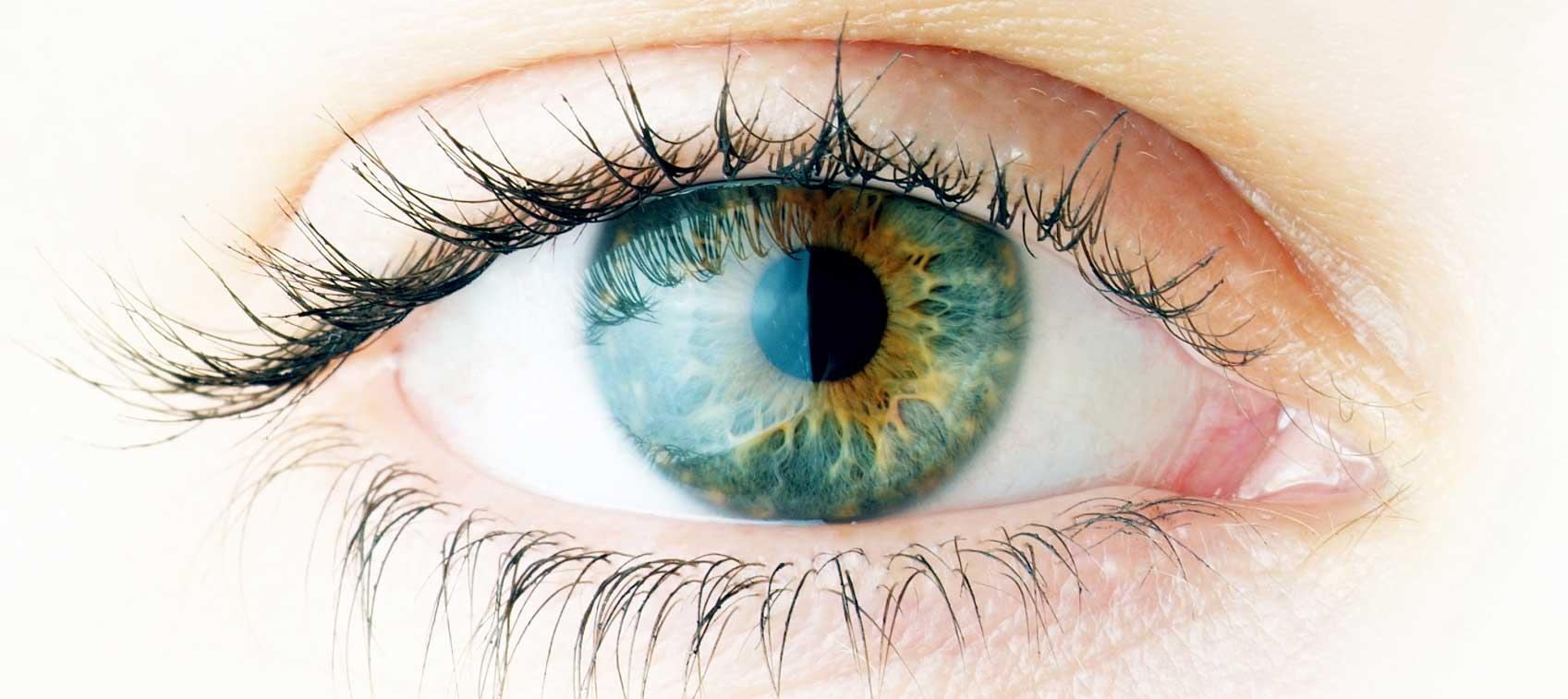 Optometrist in Gold Coast.